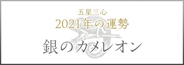 銀のカメレオン2021年の運勢