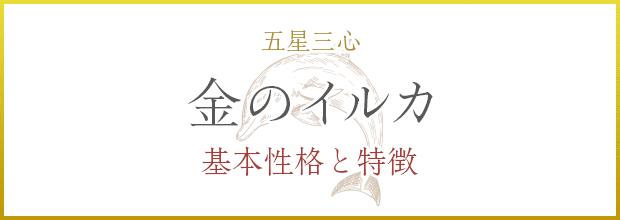 金のイルカの基本性格と特徴